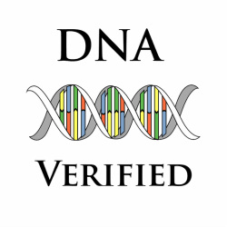 DNA Verified Image